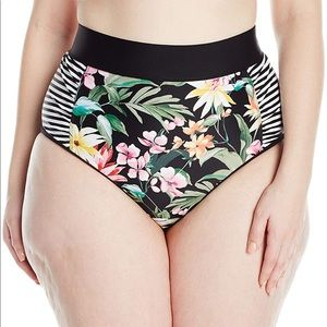 Skye Plus Elysian Fields Waverly Bottom